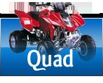Ricambi, Abbigliamento, Stivali e Caschi per Quad/ATV